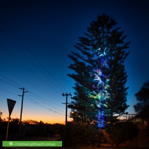 Christmas Light display at 154 Ewen Street, Doubleview