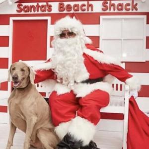 Santa Beach Shack