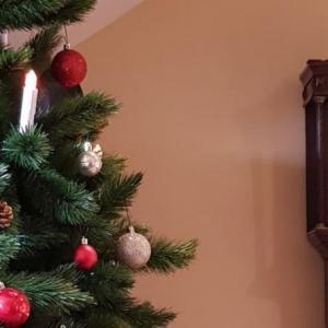 A Magical Victorian Christmas